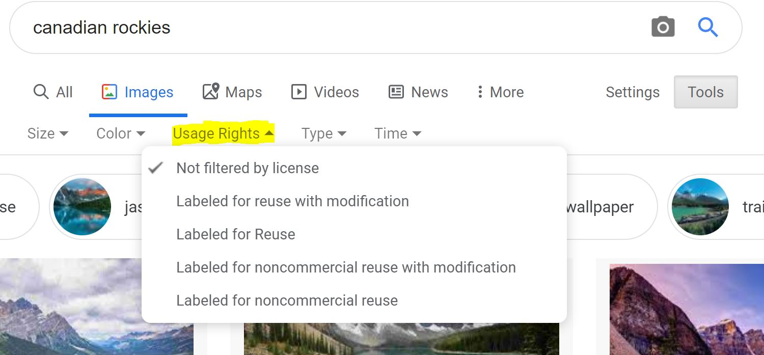 Google Image License Selection